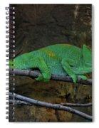 Parson's Chameleon Spiral Notebook