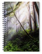 Parting Of The Mist Spiral Notebook