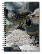 Partridge Pair Reno Nv Spiral Notebook