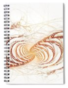 Passage To Clarity Spiral Notebook