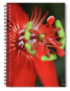 Passiflora Vitifolia Scarlet Red Passion Flower Spiral Notebook