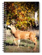 Passing Buck In Autumn Field Spiral Notebook