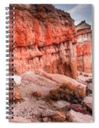 Passing Time At Red Rock Spiral Notebook