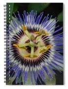 Passion Bloom Vi Spiral Notebook