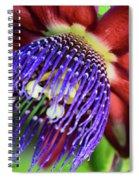 Passion Flower Ver. 11 Spiral Notebook