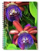 Passion Flower Ver. 12 Spiral Notebook