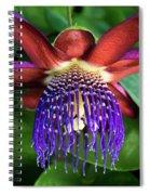 Passion Flower Ver. 13 Spiral Notebook