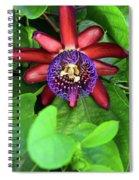 Passion Flower Ver. 15 Spiral Notebook