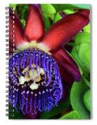 Passion Flower Ver. 17 Spiral Notebook