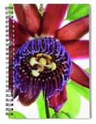 Passion Flower Ver. 5 Spiral Notebook