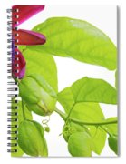 Passion Flower Ver. 9 Spiral Notebook