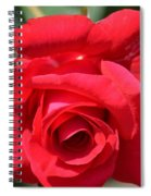 Passion Rose Spiral Notebook