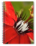 Passionate Flower Spiral Notebook