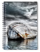 Past Glory Spiral Notebook