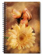Past Life Spiral Notebook
