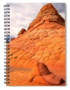 Pastel Checkerboad Landscape Spiral Notebook