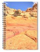 Pastel Checkerboard Spiral Notebook