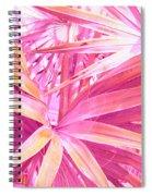 Pastel Dream In Pink Spiral Notebook