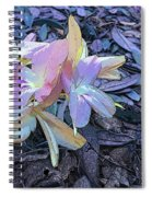 Pastel Petals Spiral Notebook