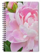 Pastel Pink Peonies Spiral Notebook