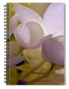 Pastel Purple Pleasure Spiral Notebook