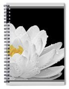 Patch Of Gold Spiral Notebook