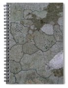 Patches Of Grey And Life Spiral Notebook