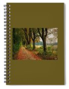 Path Along The Horses Meadow On The Farm Lovedayvale L A S Spiral Notebook