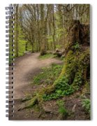 Path In Judy Woods Spiral Notebook