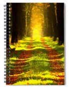 Path In The Forest 715 - Painting Spiral Notebook