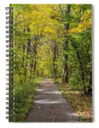 Path In The Woods During Fall Leaf Season Spiral Notebook