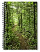 Path In The Woods Spiral Notebook
