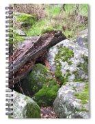 Path Not Taken Spiral Notebook