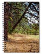 Path Of Enlightenment Spiral Notebook