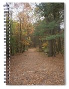 Path On Wilsons Mountain Spiral Notebook