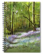 Path Through Bluebell Wood Spiral Notebook