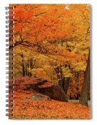 Path Through New England Fall Foliage Spiral Notebook