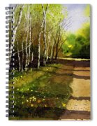 Path Through Silver Birches Spiral Notebook