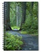 Path Through The Cedars Spiral Notebook