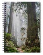 Path Through The Light Spiral Notebook