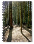 Path Through The Woods. Spiral Notebook