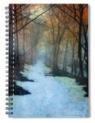 Path Through The Woods In Winter At Sunset Spiral Notebook
