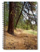 Path To Enlightenment 2 Spiral Notebook