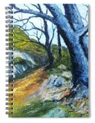 Path To Rivendale Spiral Notebook