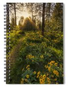 Path To The Golden Light Spiral Notebook