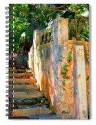 Pathway Spiral Notebook