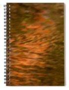 Pathway Of Light Spiral Notebook
