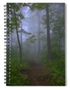 Pathway Through The Fog Spiral Notebook