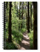 Pathway Through The Woods Spiral Notebook
