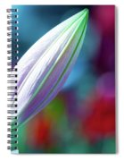 Patience Spiral Notebook
